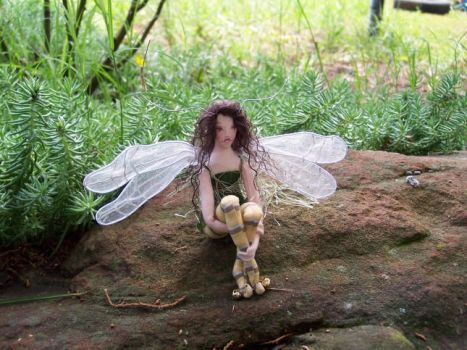 Tiny Dragonfly Faerie by paulaspixies