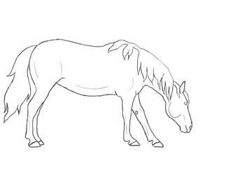 Grazing Horse Lineart by cyrstalandcoal