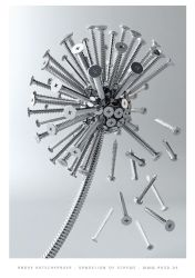 Dandelion of screws by Kutsche