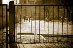 behind the fence by kaval0rn