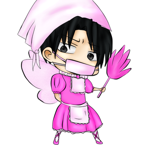 Levi x Reader: Cleaning Fairy? (ONE-SHOT) by Mochi-and-2P-Rose on