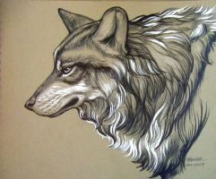 Sooper Wolf by HouseofChabrier