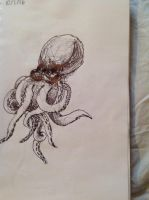 Octopus by wingedmusician