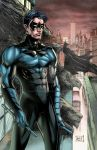 Nightwing 2014 Colors Blue