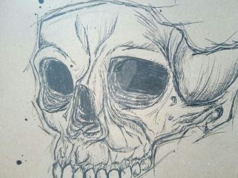 Skull by Catharsiscath