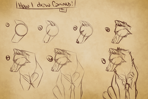 How I Draw Canines Pt 1 | + JMMMM! by AcrylicFoxCreations