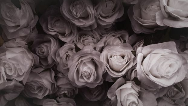 Bed of Roses II by RCAmbriz