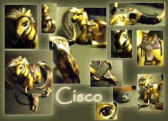 Cisco by g33kgirl1980