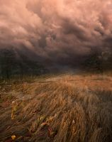 Path to Storm Premade Background by little-spacey