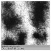 Dog Hair Brushes by Scully7491