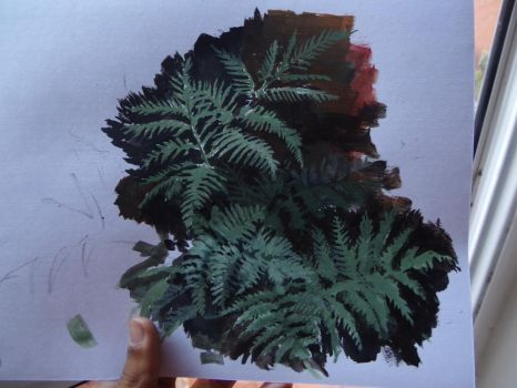 One of my  Pteris tremula, acrylic paint by Lucas-Attwell