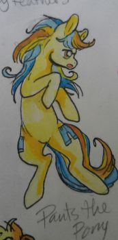 OC pony: Pants the pony by QueenAnneka