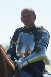 Mr Darrell. Jousting, The Noble Look by scratzilla
