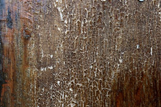 Texture 227 by Malleni-Stock