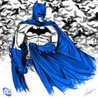Heroes Series: BATMAN by LouizBrito