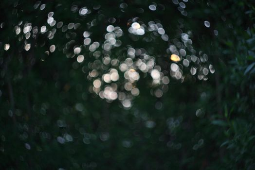 (SOOC) Swirly Bokeh - Get it Right! by Q8iEnG