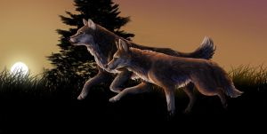 Competition Entry for Tienala by Red-WereZ
