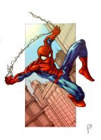 Spider-man Pencils in Colour by ParisAlleyne