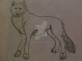 Wolf by ICE46