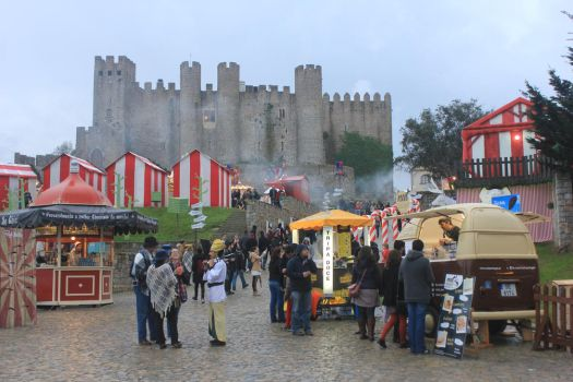 Obidos Castle by Andre-anz