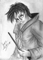 James with wand by pottering