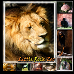 Memories LR Zoo01 by XvisionaryX