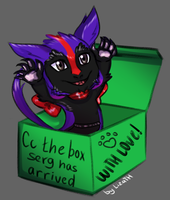 CC the box serg has arrived by lizathehedgehog