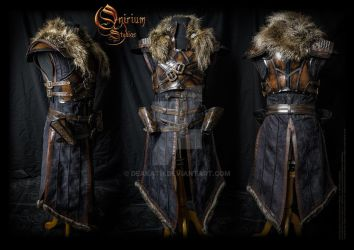 Witcher inspired - Warrior armor set by Deakath
