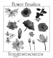 Flower Brushes by froggiesresources