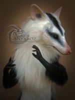 White Eared Opossum Room Guardian by AnyaBoz