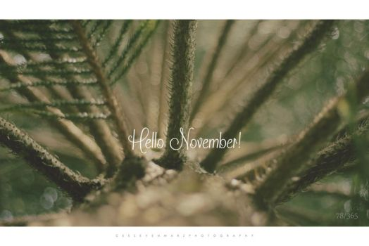 Hello November by ceesevenmarzartworks