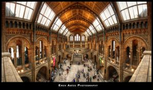 Natural History Museum by erenabice