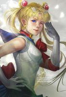 Sailormoon Crystal by pauldng