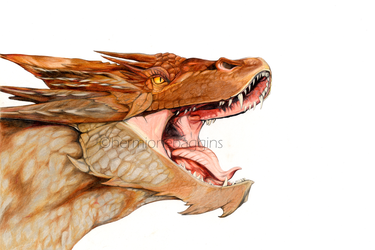 Smaug by hermione-baggins