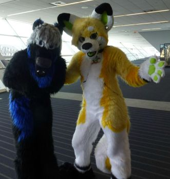 Anthrocon 2013: ZipZap And Penumbra by CinemaSpeaks