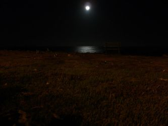 Moon and the Sea and a Bench by p--wack