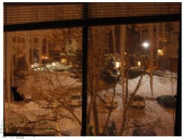2010 10 02 Snow Pictures 02 by lilly-peacecraft