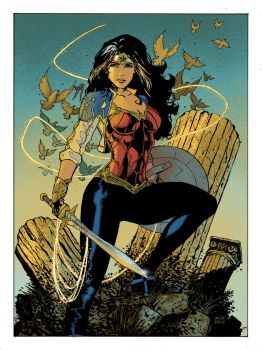 Wonder Woman by IntoThePrism