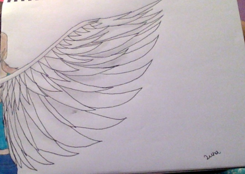 Journeys wings by maryd45