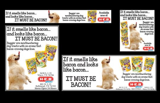 Beggin' Ad for H-E-B by KriticKilled