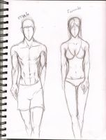 How I sketch Bodies by omeay