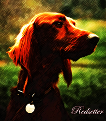 Redsetter by Neoandroid