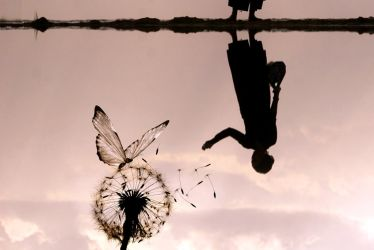 The Diving Bell(e) and the Butterfly by ahermin