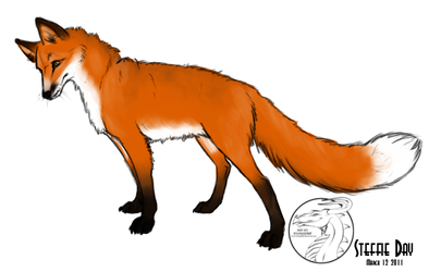 Fox by stevie12397