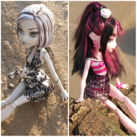 Frankie in the water and Draculaura on the rocks. by coolkidelise