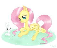 Fluttershy and Angel Bunny by steffy-beff