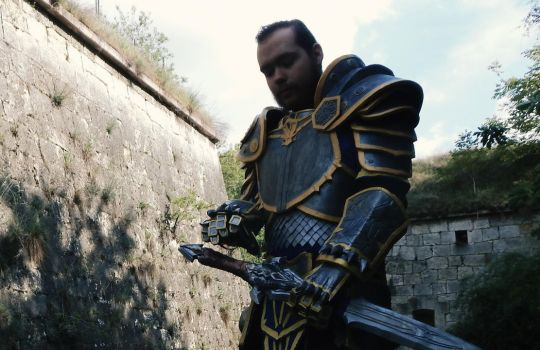 Warcraft: The Beginning - Anduin Lothar Cosplay #2 by Falkonsflight