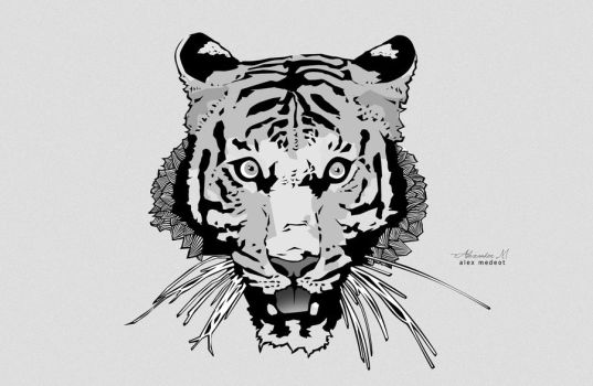 Tiger Illustration by Noise-Less