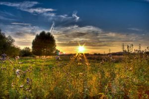 Sunset HDR 2-8-11 by sk8-element