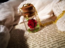 Beauty and the Beast Necklace by MySoulShards